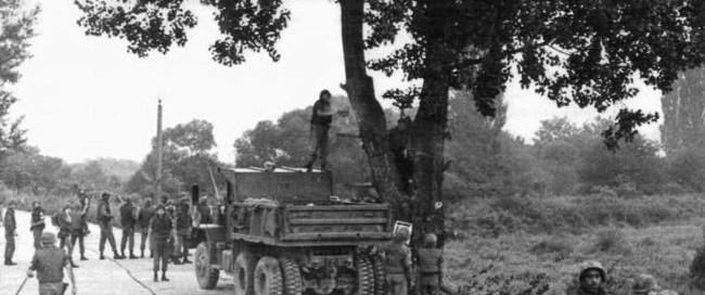 Members of the 2nd Engineer Battalion begin to cut down the tree