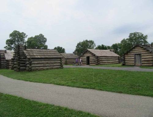 The wood of Valley Forge